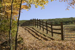Fenced Farm. Gorgeous New England farmland with blue sky on the horizon and wooden fencing surrounding cow pasture Stock Image