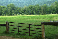Fenced in Farm pasture land. With trees and mountains Royalty Free Stock Photography