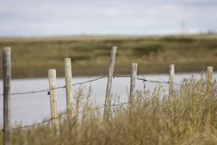 Fenced Field. A fence in a farmers field Royalty Free Stock Image