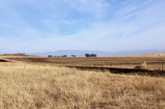Fenced Field of Dry Grass in South African Winter Landscape Royalty Free Stock Photo