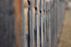 Fenced Focus Royalty Free Stock Image
