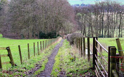 Fenced Footpath through an English Meadow Royalty Free Stock Image