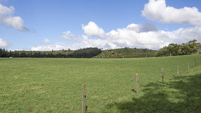 Fenced in Paddock against a blue sky with wooly clouds Royalty Free Stock Photography