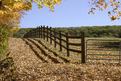 Fenced Pasture. Fenced in cow pasture on small farm in Central Massachusetts Stock Image