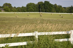 Fenced pastures and rolled hay bales Stock Photography