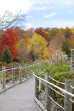 Fenced path among the autumn trees Royalty Free Stock Photo