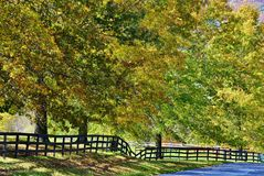 Fenced pathway. Autumn scenic broken fence along a walkway Stock Images