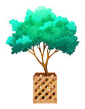 A fenced tree. On a white background Royalty Free Stock Photos