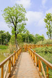 Fenced wooden footbridge over water in sunny spring Stock Photography