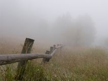 Fencelin in fog. Trees, fence, meadow in fog Stock Images