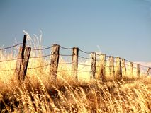Fenceline. Rural fencing in harsh environment Stock Images