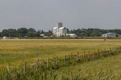 Fenceline Across Field With Grain Elevator in Distance. Fenceline Across Green Field With Grain Elevator in Distance Stock Photography