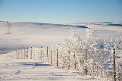 Fenceline In Frost and Snow. Winter Scene Stock Photography