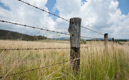 Fenceline through grasslands. Royalty Free Stock Image
