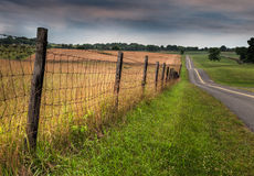 Fenceline and Road. Rural Maryland, USA Royalty Free Stock Photo