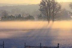 Fenceline snö täckt fält Fotografering för Bildbyråer