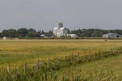 Fenceline a través del campo con el elevador de grano en distancia fotografía de archivo