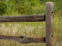 Fencepost Stock Photos