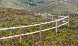 fencepost Zdjęcie Royalty Free
