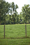Fencepost and Meadows Royalty Free Stock Image
