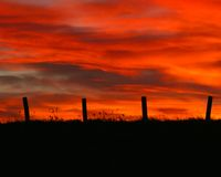 Fencepost sunset in January. Sunset with fence silhouette in winter stock images