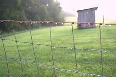 Fencerow avec des baisses de rosée de matin Photographie stock libre de droits