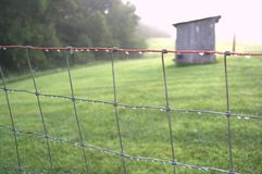 Fencerow com gotas do orvalho da manhã Fotografia de Stock Royalty Free