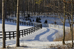 Fences. On a rural horse farm Royalty Free Stock Photo