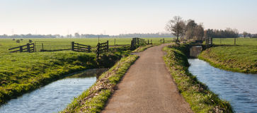 Fences in a Dutch polder landscape Royalty Free Stock Photography