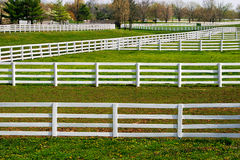 Fences Galore Stock Photography