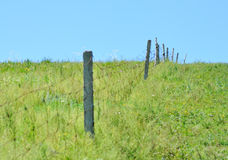 Fences in the grassland. A row of fences in the grassland Stock Image