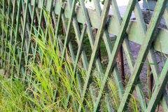 Fences by the green park Royalty Free Stock Photography