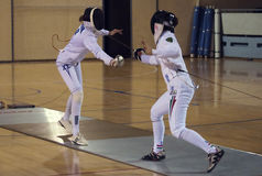 Fencing-2 Royalty Free Stock Photos