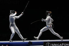 Fencing Stock Photography