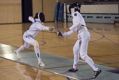 Fencing Stock Photo