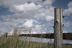 Fencing. In a meadow for horses Royalty Free Stock Photo