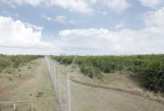 Fencing along the Chimpanzee Sanctuary of Ol Pejeta Conservancy, kenya Stock Photo
