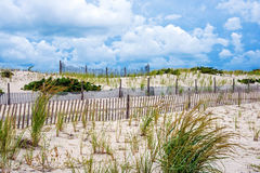 Fencing Along the Dunes Stock Photography