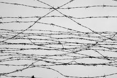 Fencing. Fence with barbed wire. Let. Jail. Thorns. Block. A prisoner. Holocaust. Concentration camp. Prisoners. Depressive backgr Royalty Free Stock Image