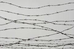 Fencing. Fence with barbed wire. Let. Jail. Thorns. Block. A prisoner. Holocaust. Concentration camp. Prisoners. Depressive backgr Stock Photography