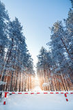 Fencing prohibiting travel to  forest. Fencing prohibiting travel to snow-covered forest Royalty Free Stock Photo