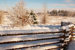 Fencing in Winter. A snow covered fence adds visual motion to a quiet winter scene royalty free stock image