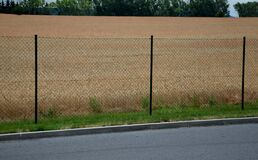 Free Fencing With A Wire Fence 2 M High Cereal Field Concrete Interlocking Paving Stock Photo - 195140080