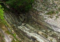 Fenda da pedra lisa desigual cinzenta coberta com a árvore de suspensão do musgo Fotos de Stock