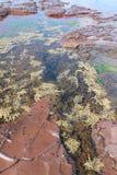 Fenda na plataforma da rocha Imagem de Stock
