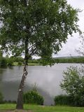 Fendrod Jeziora Widok Fotografia Royalty Free