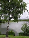 Fendrod Lakesikt royaltyfri fotografi