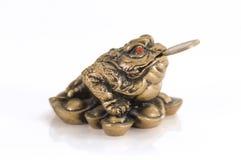 feng青蛙幸运的shui 库存图片