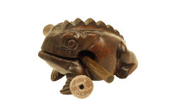 feng青蛙货币shui 免版税库存图片