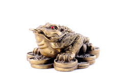 Feng Shui. 3 Legged Toad. On a Bed of Coins royalty free stock photography